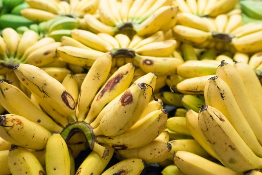 Bananas at Rustys Markets